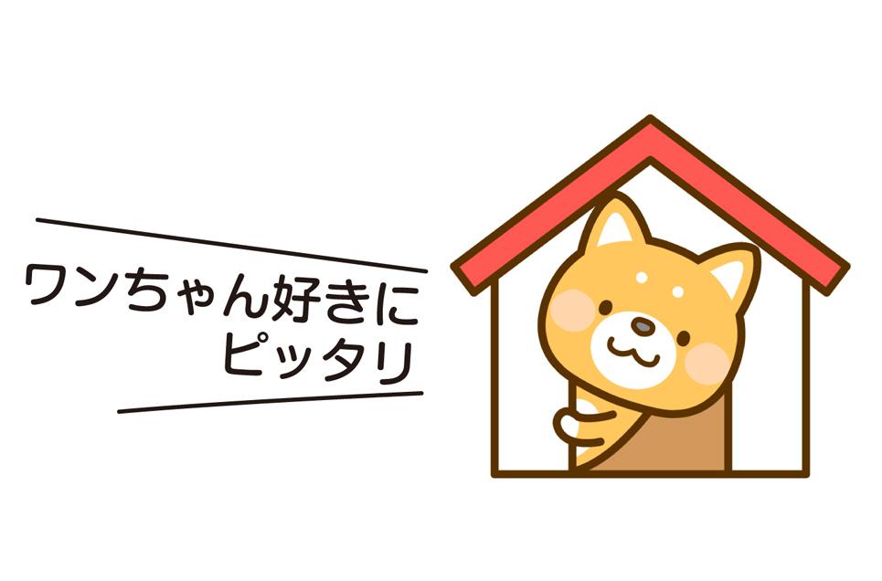時給1,000円+交通費別途支給(上限有)